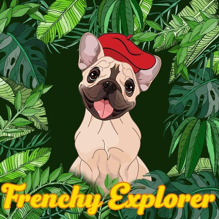 FrenchyExplorer