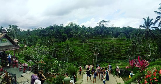 Bali tour experience