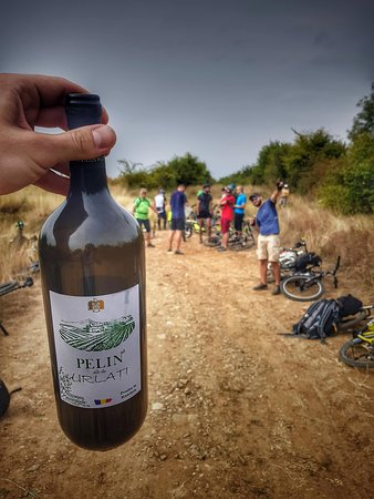 Bike trip with some local wine tasting