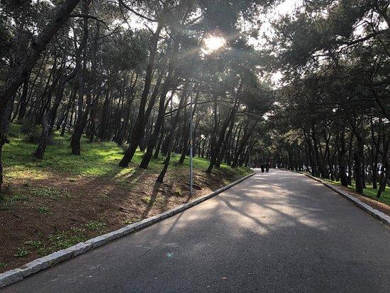 Heybeliada, Turkey: Прогулка по острову )))