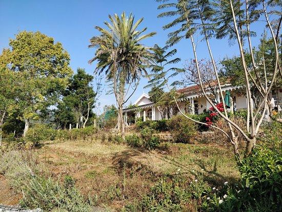 La Maison: Back garden