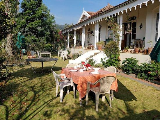 La Maison: Backyard and Lawns