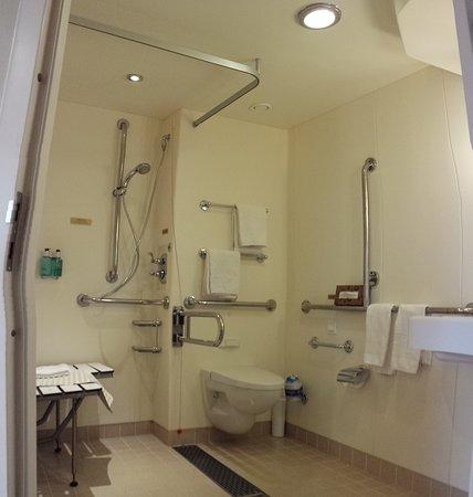 Regal Princess: very comfortable accessible bathroom