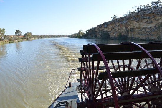 Murray Princess: Travelling Upstream on the Murray River