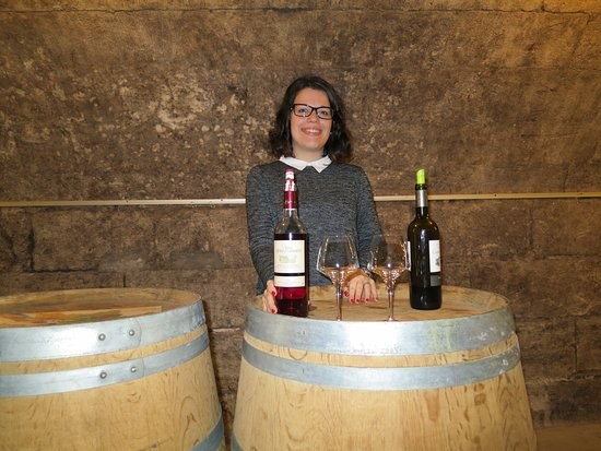 Viking Forseti: Our venture of the ship to our own personal wine tasting in Bordeaux.