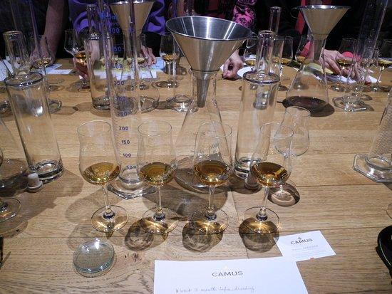 Viking Forseti: The set up for the Camus tasting/blending