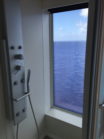 Norwegian Escape: This is a more detailed view of the shower. Note the shower head and jets.