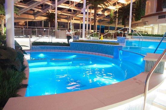 Anthem of the Seas: Solarium pool area