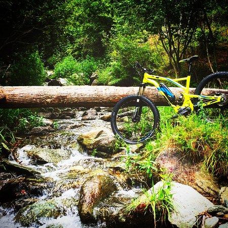 barcollo bike tour