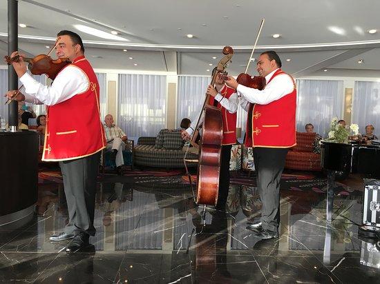 AmaViola: Entertainment.  Hungarian music and dancing,