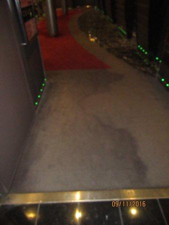 MSC Divina: Deck 14 buffet elevator disgusting