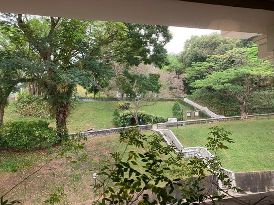 Hotel Fort Canning: View of Fort Canning Park from our hotel room (room 334)