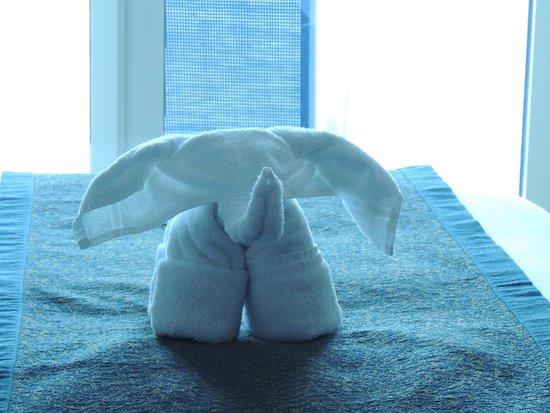 Norwegian Escape: Towel animal in our cabin