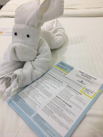 Norwegian Getaway: Towel animal