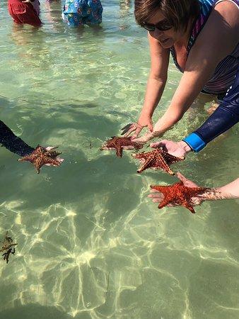Cayman vacation