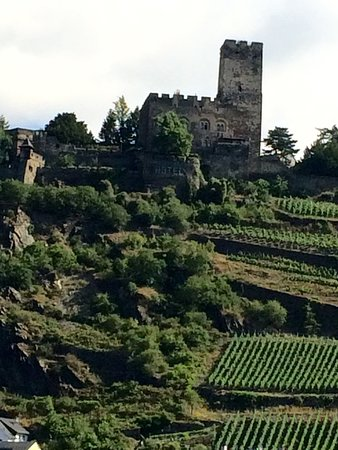 Viking Lofn: Vineyards and castle on the Rhine