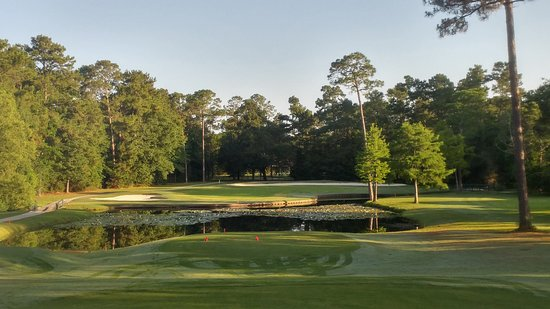 Diamondhead, MS: #13 of the Cardinal golf course