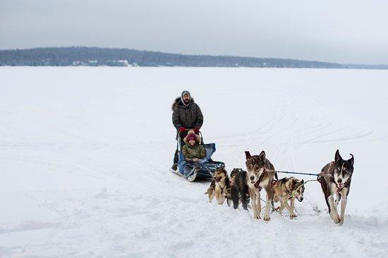 Skyport Lodge: Dog sledding on Devil Track Lake