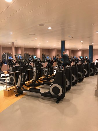 Harmony of the Seas: Just part of the Fitness center