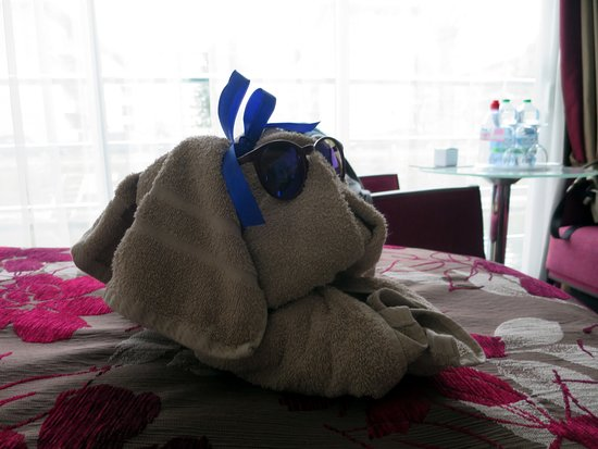 Avalon Tranquility II: An example of how awesome the crew is! They made this little towel doggy fo