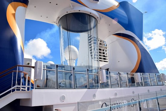 Ovation of the Seas: This is one of the activities on the ship.  Ifly