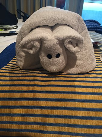 Carnival Vista: Towel animal left in our cabin by our stateroom steward, Maugn!!!