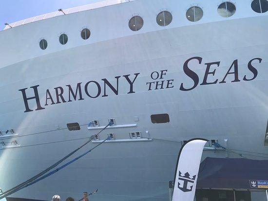 Harmony of the Seas: The Ship