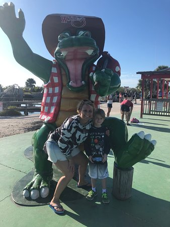 My nephew and I had so much fun seeing all the gators!