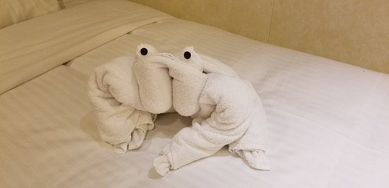 Carnival Breeze: One of the days I had a frog towel activity on my bed.