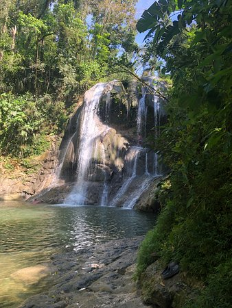 Waterfall Diet Book