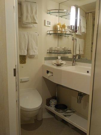 Majestic Princess: Cabin M103 Bathroom