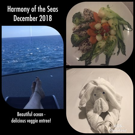 Harmony of the Seas: A little collage from our cruise....  My wonderful veggie meal at Wonderlan