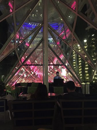 Harmony of the Seas: Central Park at night - piano player playing wonderful music!