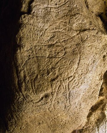 Viking Forseti: Pair Non pair Grotto