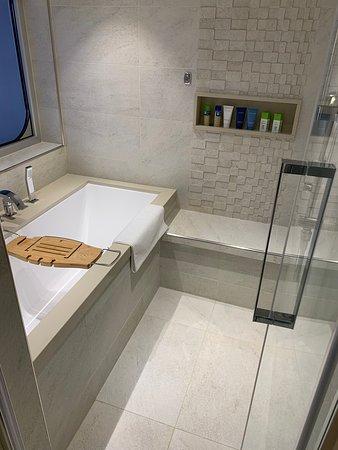 Viking Sky: Explores suite tub/shower room