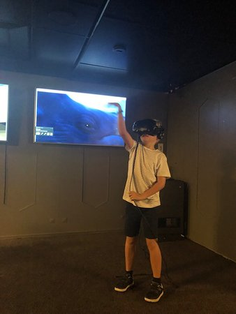 Marella Discovery 2: Virtual reality room