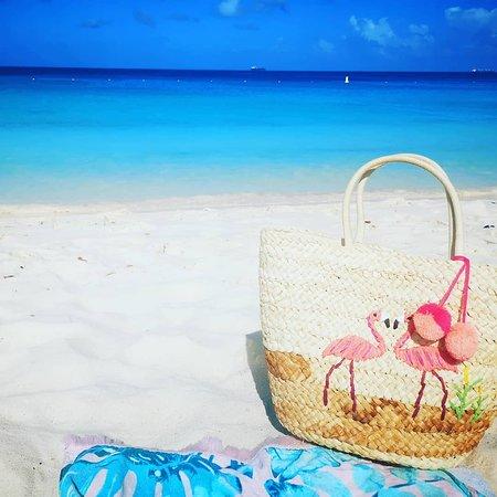 Britannia: Eagle Beach, Aruba.