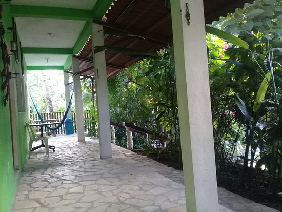 Hotel Las Gardenias: La hamacas