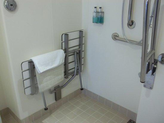 Royal Princess: Shower area with floor drain perimenter, sturdy pull down bench.