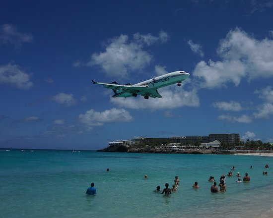 Oasis of the Seas: Loved watching the planes on Maho Beach!