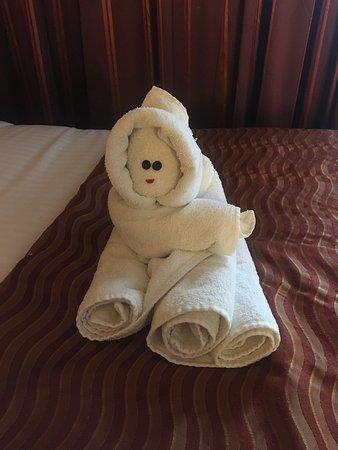 Carnival Dream: Towel