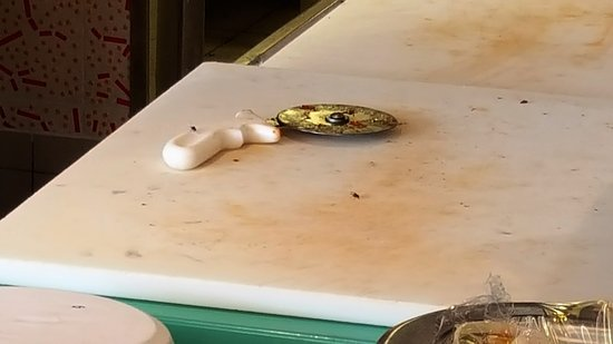 Carnival Dream: flies on the pizza cutting surfaces