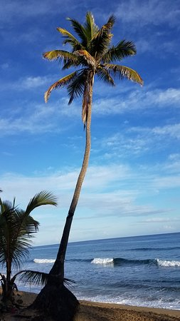 Amazing stay on the northern shores of Rincon