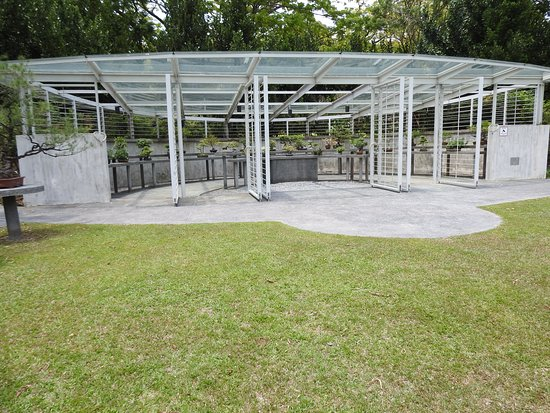 Singapore Botanic Gardens: A small part of the Bonsai Collection.