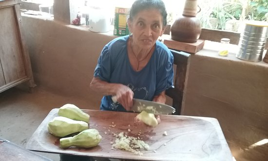 Juluchuca, Meksyk: juanita preparing some tasty chayotes in fresh tomatoes from her garden