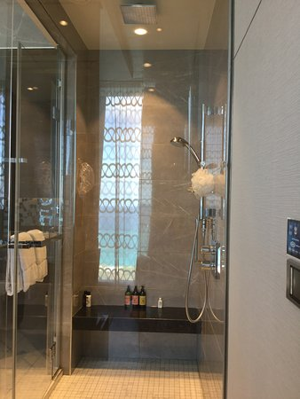 Oasis of the Seas: Shower Master bath
