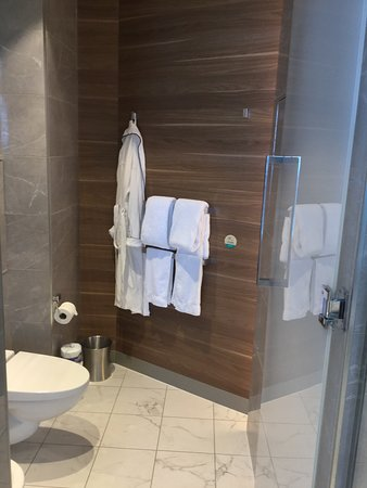 Oasis of the Seas: Water Closet in Master Bath