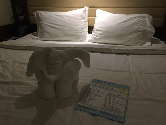 Norwegian Epic: cute towel animals (leave a tip for these people!)