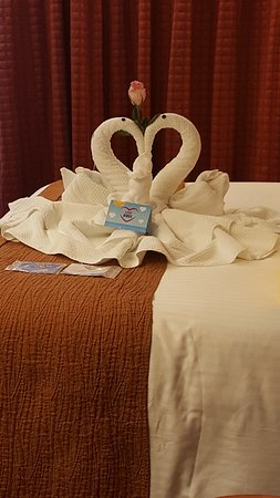 Carnival Splendor: Celebrated *31* yr Anniversary! This is the towel animals left by our Fantastic Room Steward Julius !