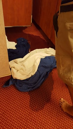 Carnival Splendor: Flooding in our cabin.